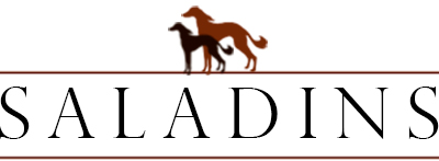 Saladins Logo